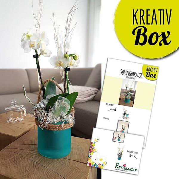 Bild von Kreativ-Box Sommerbrause von Rutishauser
