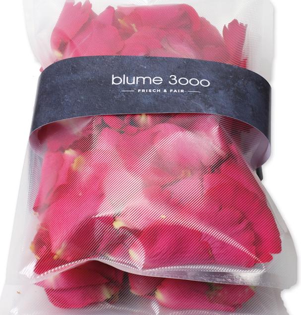 Rosenblätter pink von blume 3000