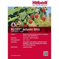 Bild von Himbeeren Strauch BLISSY® autumn bliss 4 Stk.