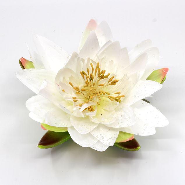 Bild von Seerose / Lotosblume künstlich Ø15cm weiss