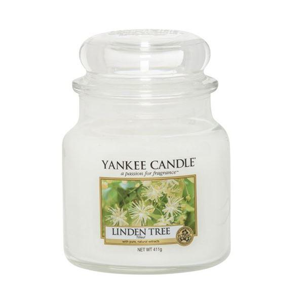 Image sur Linden Tree medium Jar