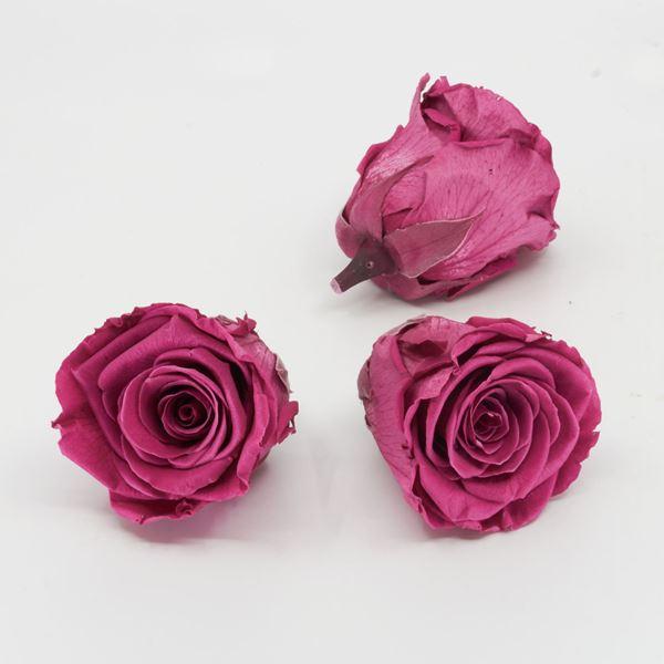 Image sur Rose lyophilisée 'rose' Ø6cm h5cm 3 pièces