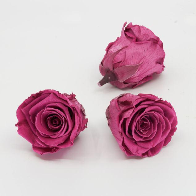Image de Rose lyophilisée 'rose' Ø6cm h5cm 3 pièces