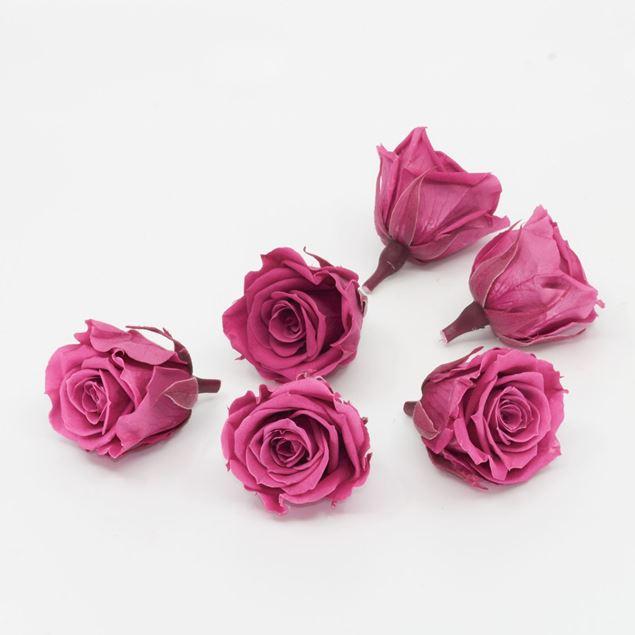 Image de Rose lyophilisée mini 'rose' Ø4cm h3.5cm 6 pièces