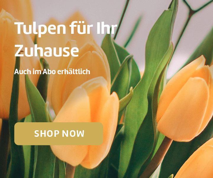 Tulpen für Ihr Zuhause. Auch im Abo erhältlich.