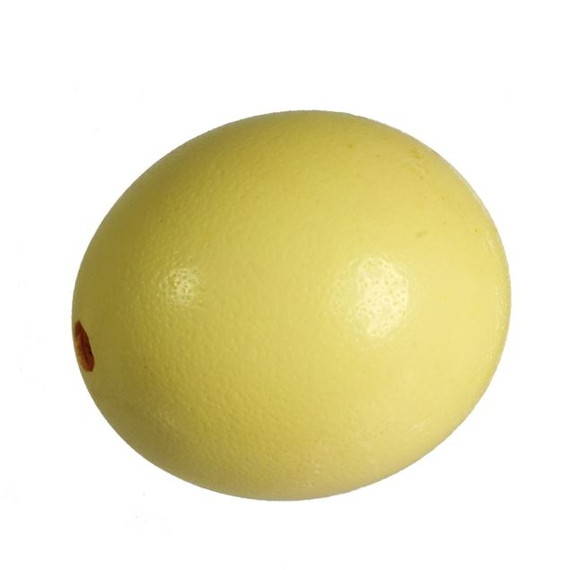 Image de œuf d'autruche 'soufflés' 1 pièce