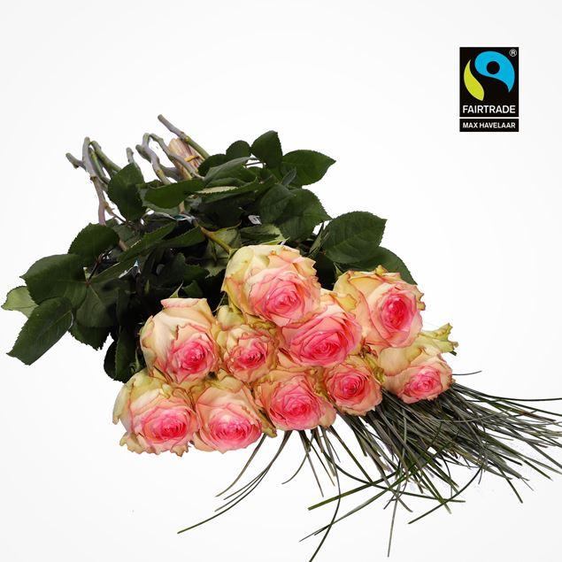 Edelrosen weiss/rosa 50cm 10 Stk mit Bärengras - blume 3000