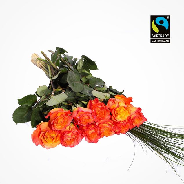 Edelrosen orange 50cm 10 Stk mit Bärengras - blume 3000