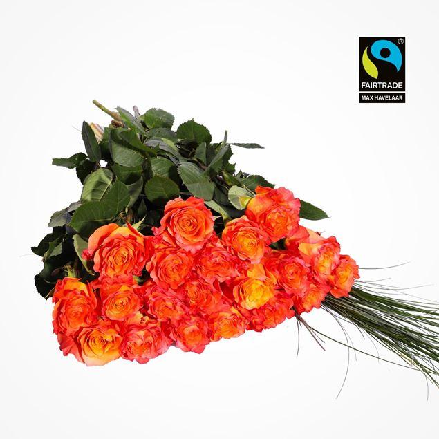 Edelrosen orange 50cm 20 Stk mit Bärengras - blume 3000