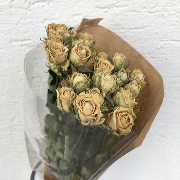 Trockenblumen Strauss Polyantha-Rosen in creme-weiss Tönen