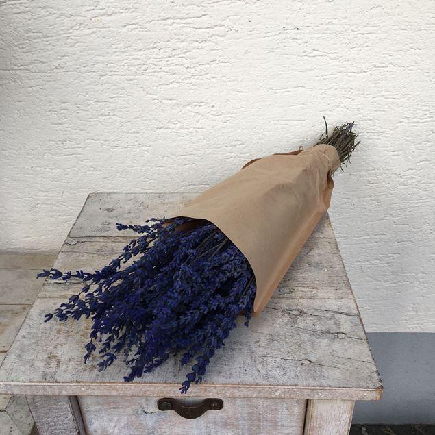 Trockenblumen Strauss Lavendel Bund blau