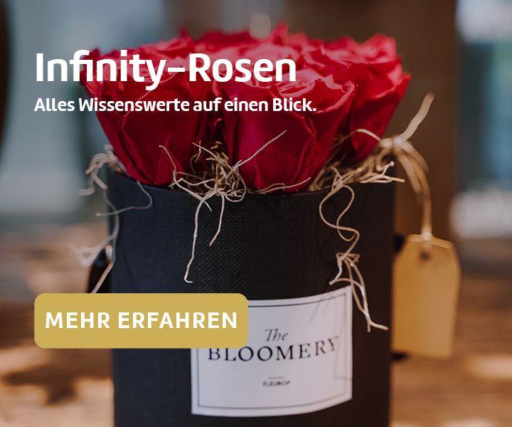 Infinity-Rosenboxen: Einfach zauberhaft