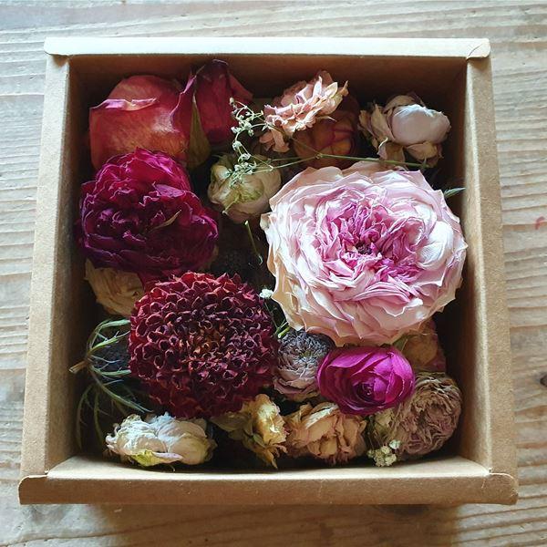 BlütenBox 17cm x 17cm