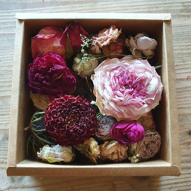 BlütenBox 27cm x 11.5cm