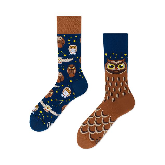Owly Moly Socks